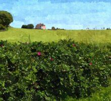Beautiful green field and blue sky Sticker