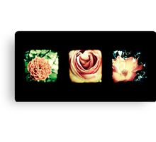 Flashback Rose Triptych Canvas Print