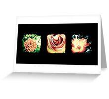 Flashback Rose Triptych Greeting Card