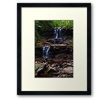 F.L. Ricketts Falls Framed Print