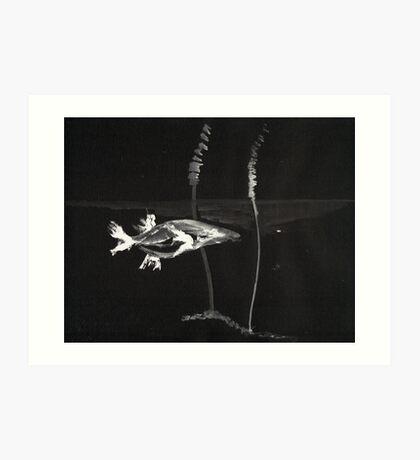 0008 - Brush and Ink - Koi Art Print
