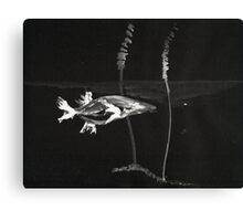0008 - Brush and Ink - Koi Canvas Print