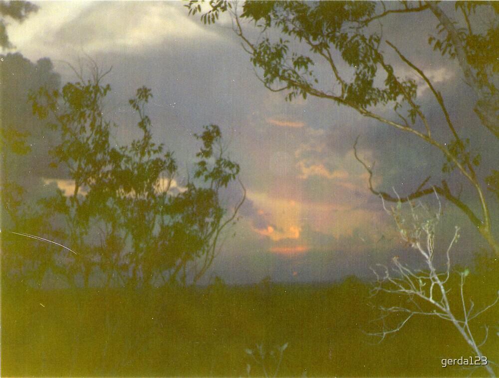 Sunset, Bush, by gerda123