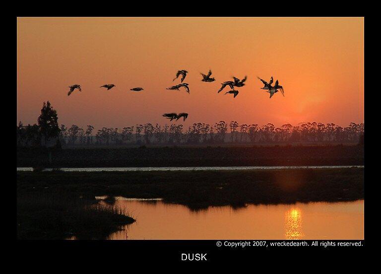 Dusk by Birte