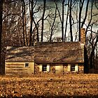 The Cottage by Debra Fedchin