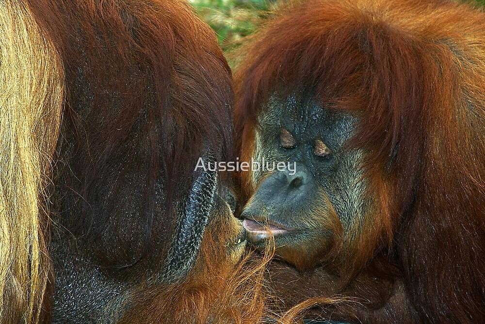 Kiss me you fool. by Aussiebluey