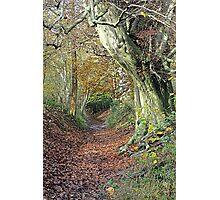 Boundary Path Photographic Print