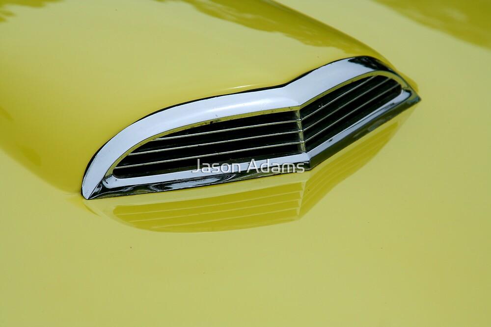 Yellow Bird by Jason Adams