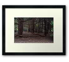 Dark Wood Framed Print