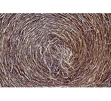 Swirling hay Photographic Print