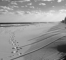 Shadows in the Sand by Debra Fedchin