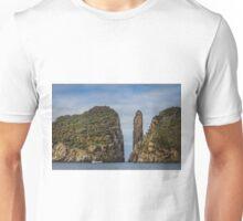 Tasman Island Totem Pole, Tasmania Unisex T-Shirt