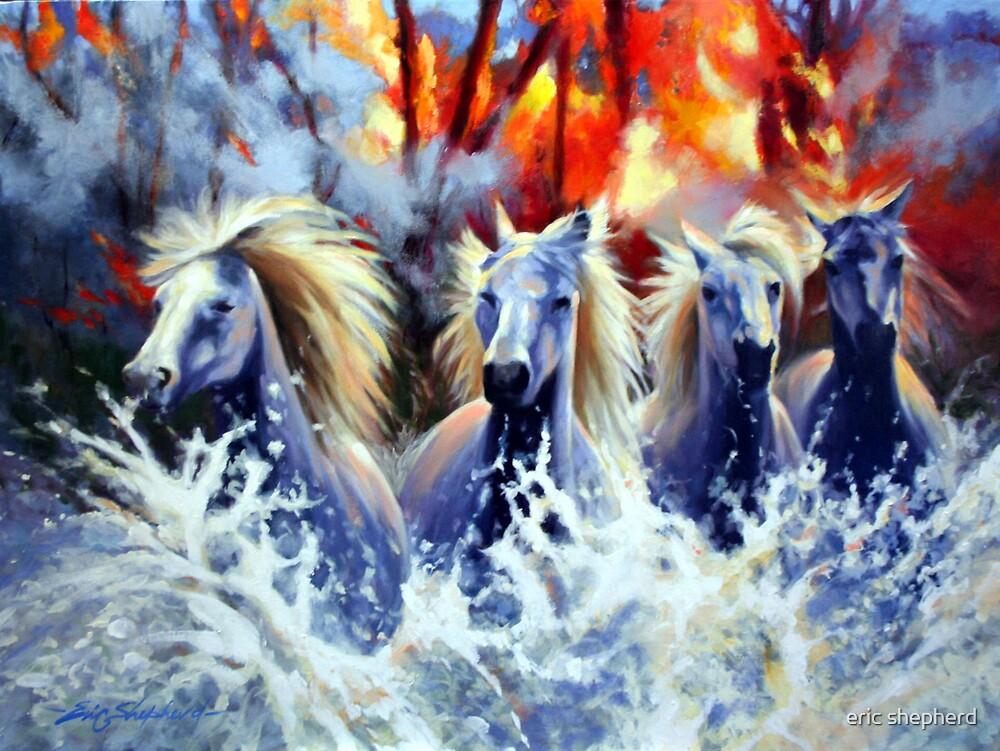 Wild Fires by eric shepherd