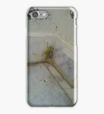 The insect iPhone Case/Skin