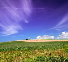 Sea of grass - 2 by numgallery