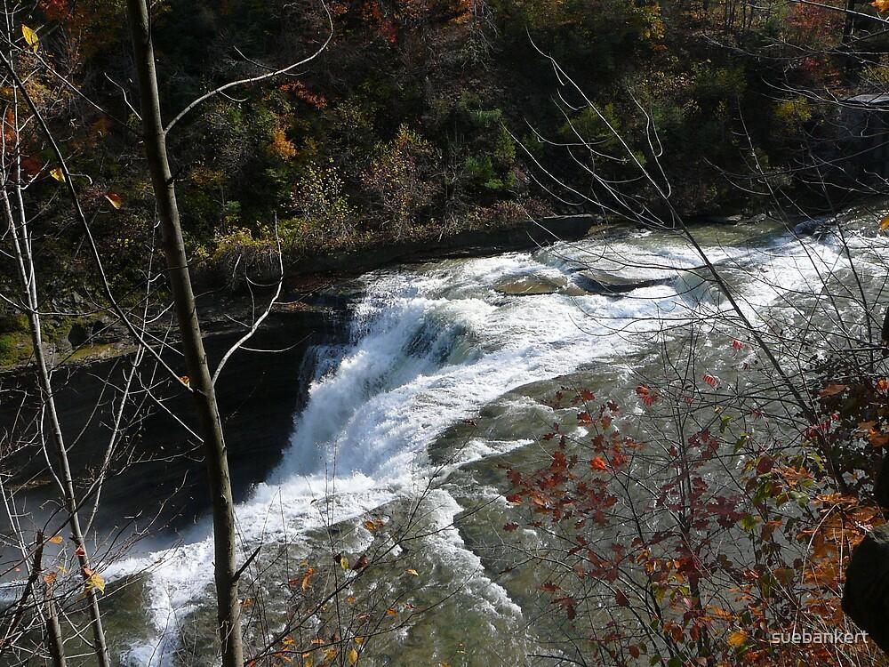 Letchworth Waterfall 2 by suebankert