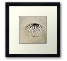 seacreature Framed Print