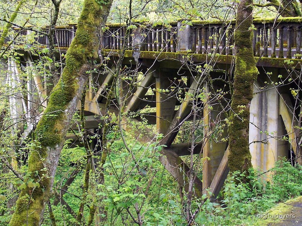 Old Weathered Bridge by digitaldavers