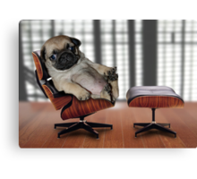 Top Dog Canvas Print