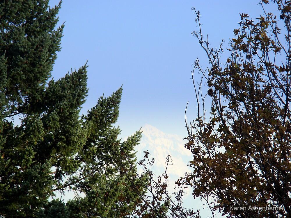 Mt. Hood through the trees by Karen Ashenberner