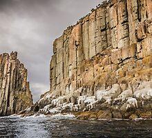 Cape Pillar Tasman Island Tasmania by Russell Charters