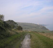 South Downs View by AminaHays