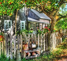 A Gardeners yard by Mike  Savad