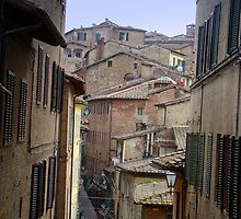 Streets of Siena by Karen Ashenberner