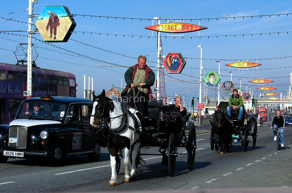 What transport will you take???? by Sharon Perrett