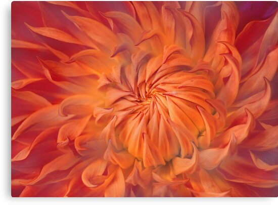 Flame by Jacky