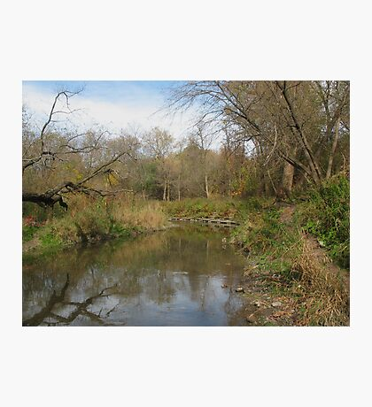 Oshawa Creek Photographic Print
