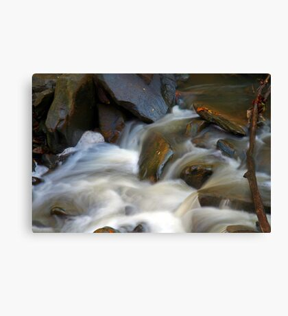 Wash Out Canvas Print