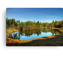 Tarn Hows,The Lake District Canvas Print