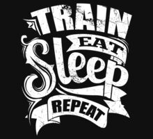 Train Eat Sleep Repeat by NibiruHybrid