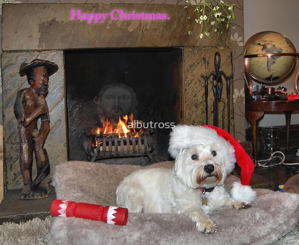 Happy Christmas. by albutross