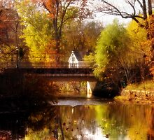 One fall day by Mike  Savad