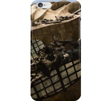 Wrought Iron, Glass and Stone Plus a Genius Imagination iPhone Case/Skin