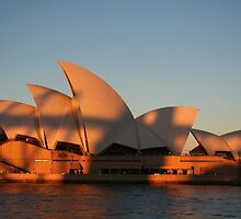 Opera House in Shadow by markmaker