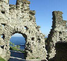 Tintagel Castle, Cornwall by Mark Wilson