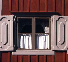 Rustic Shutters  by Maggie Hegarty