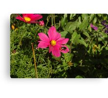 Pink and Bumble Bee Canvas Print