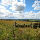 Kissing Gate by cato