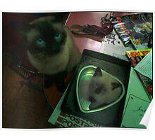 Basil and Junior Poster
