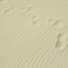 Footprints by cato