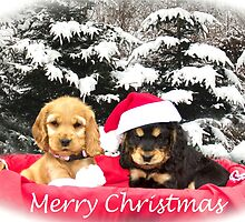 Molly & Teddy Christmas Mug by Old-Time-Images