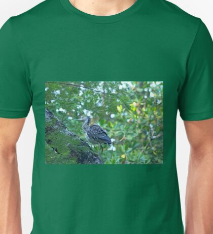 Immature Yellow Crowned Night Heron Unisex T-Shirt