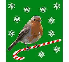 Robin Candy Photographic Print