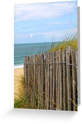 Beach fence by Elena Elisseeva