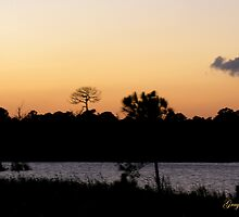 Merritt Island Sunset by Grayce Pedulla-Dillon