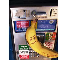 Domesticated California Banana Awaits Collect Call From Mexico Photographic Print